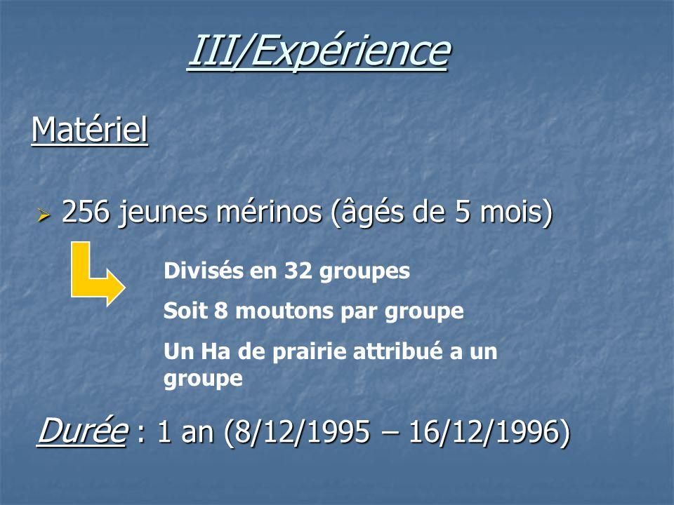 III/Expérience 256 jeunes mérinos (âgés de 5 mois) 256 jeunes mérinos (âgés de 5 mois) Durée : 1 an (8/12/1995 – 16/12/1996) Matériel Divisés en 32 gr