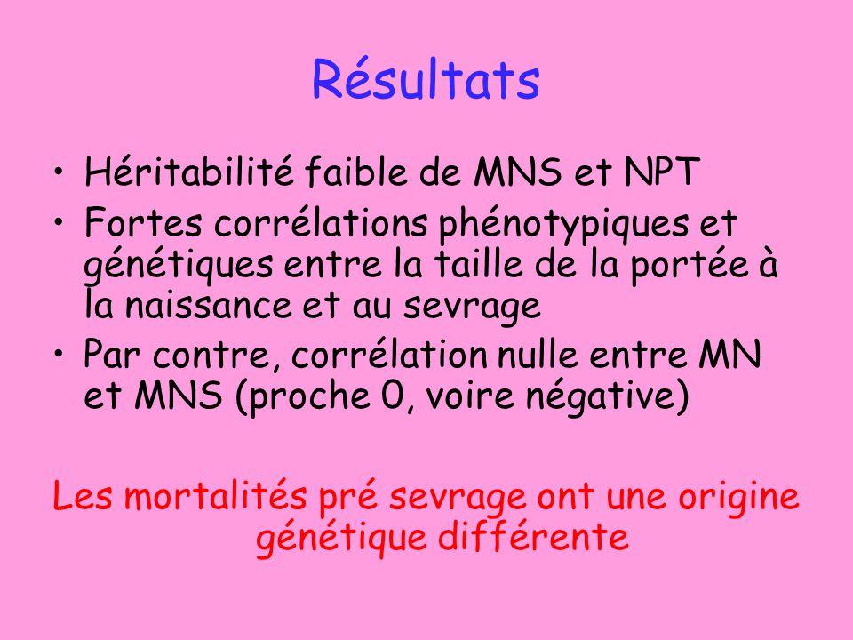 Résultats Héritabilité faible de MNS et NPT Fortes corrélations phénotypiques et génétiques entre la taille de la portée à la naissance et au sevrage Par contre, corrélation nulle entre MN et MNS (proche 0, voire négative) Les mortalités pré sevrage ont une origine génétique différente