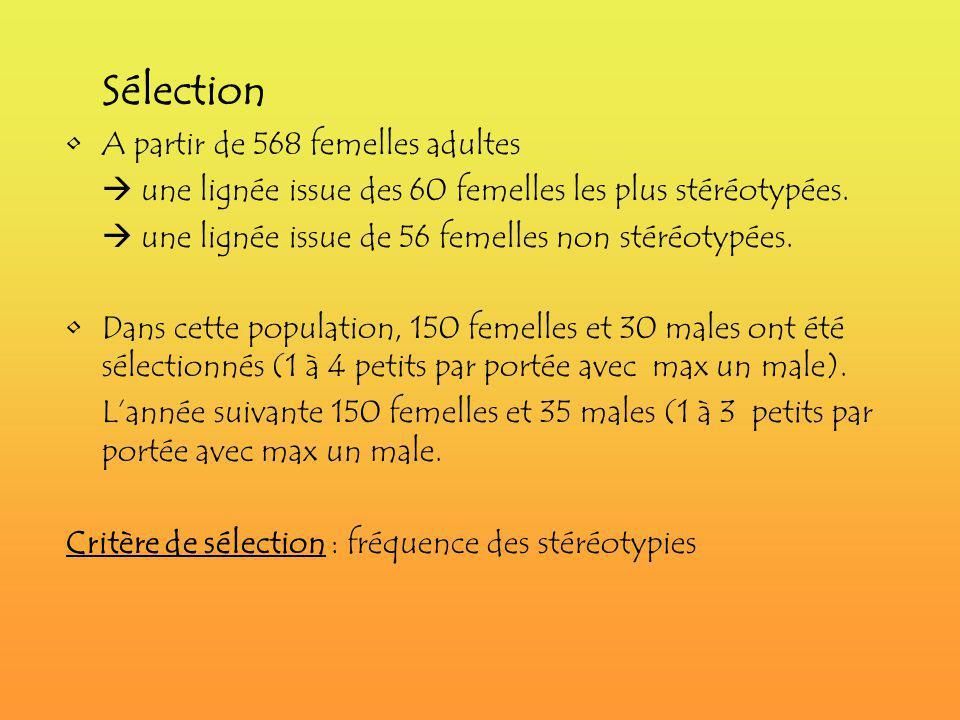 IV)Résultats obtenus Moyenne : fréquence des stéréotypies de 10% Moyenne des Poids corporels: 1,4 kg correspond à 96% du PC adulte à 2-3 semaines Héritabilité: Part de la variation phénotypique attribuable à la génétique (en valeur relative).