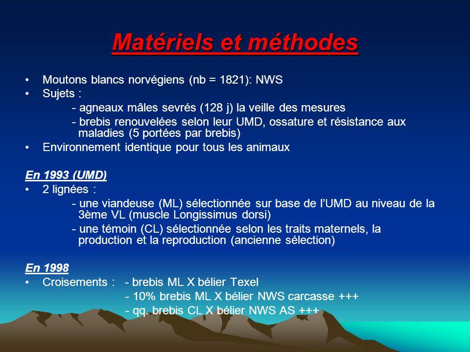 Matériels et méthodes Moutons blancs norvégiens (nb = 1821): NWS Sujets : - agneaux mâles sevrés (128 j) la veille des mesures - brebis renouvelées selon leur UMD, ossature et résistance aux maladies (5 portées par brebis) Environnement identique pour tous les animaux En 1993 (UMD) 2 lignées : - une viandeuse (ML) sélectionnée sur base de lUMD au niveau de la 3ème VL (muscle Longissimus dorsi) - une témoin (CL) sélectionnée selon les traits maternels, la production et la reproduction (ancienne sélection) En 1998 Croisements : - brebis ML X bélier Texel - 10% brebis ML X bélier NWS carcasse +++ - qq.
