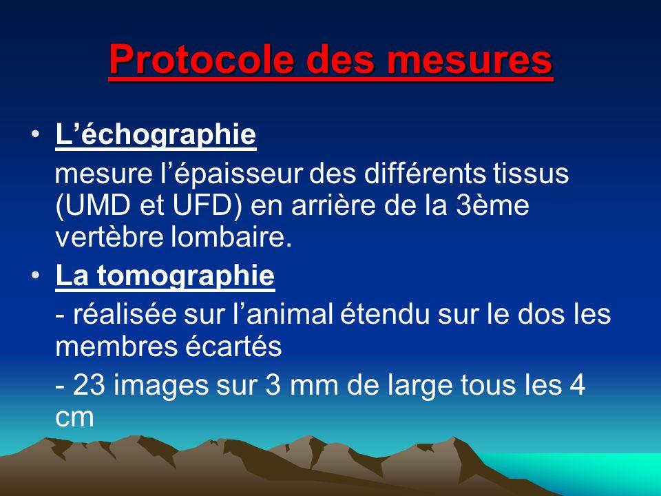 Protocole des mesures Léchographie mesure lépaisseur des différents tissus (UMD et UFD) en arrière de la 3ème vertèbre lombaire. La tomographie - réal