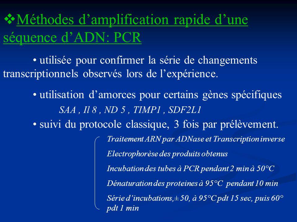 Méthodes damplification rapide dune séquence dADN: PCR utilisée pour confirmer la série de changements transcriptionnels observés lors de lexpérience.