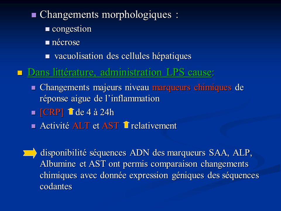 Changements morphologiques : Changements morphologiques : congestion congestion nécrose nécrose vacuolisation des cellules hépatiques vacuolisation de