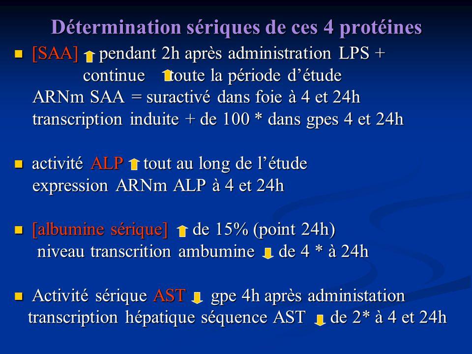 Détermination sériques de ces 4 protéines [SAA] pendant 2h après administration LPS + [SAA] pendant 2h après administration LPS + continue toute la pé