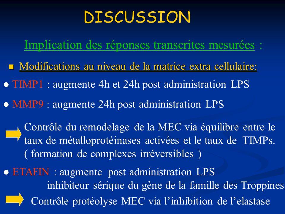 Implication des réponses transcrites mesurées : Modifications au niveau de la matrice extra cellulaire: Modifications au niveau de la matrice extra ce