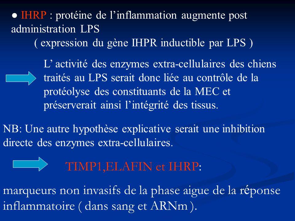 IHRP : protéine de linflammation augmente post administration LPS ( expression du gène IHPR inductible par LPS ) L activité des enzymes extra-cellulai