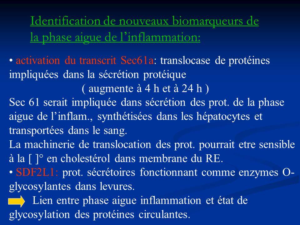 Identification de nouveaux biomarqueurs de la phase aigue de l inflammation: activation du transcrit Sec61a: translocase de protéines impliquées dans