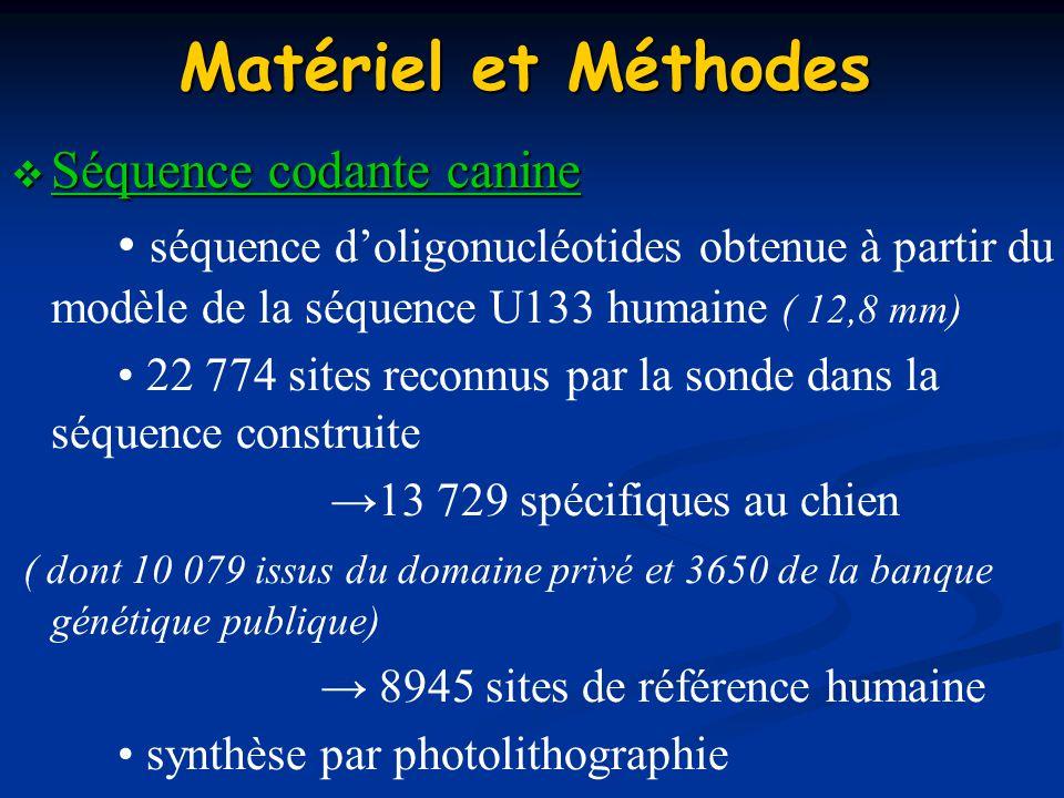 Matériel et Méthodes Séquence codante canine Séquence codante canine séquence doligonucléotides obtenue à partir du modèle de la séquence U133 humaine
