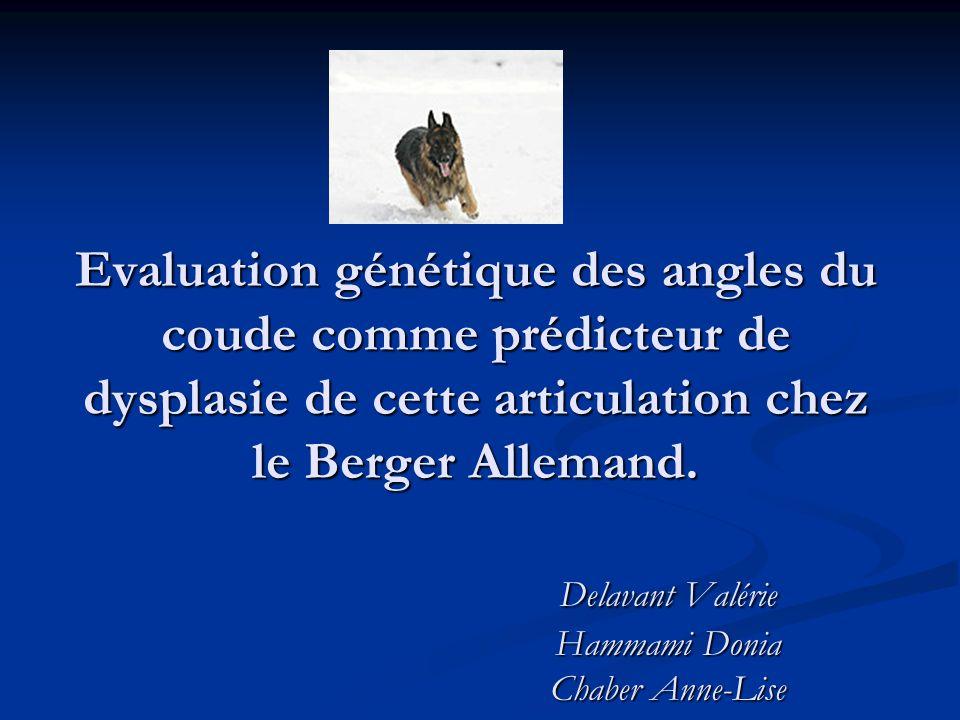 Objectifs Mesurer des angles du coude Mesurer des angles du coude Evaluer ces mesures en regard: Evaluer ces mesures en regard: - de paramètres génétiques - de la prévalence des dysplasies du coude Eluder lhypothèse Ho: « Il existe une corrélation entre les angles du coude et la dysplasie du coude (DC) ?» Eluder lhypothèse Ho: « Il existe une corrélation entre les angles du coude et la dysplasie du coude (DC) ?» confirmée chez le Rottweiler par Mues.
