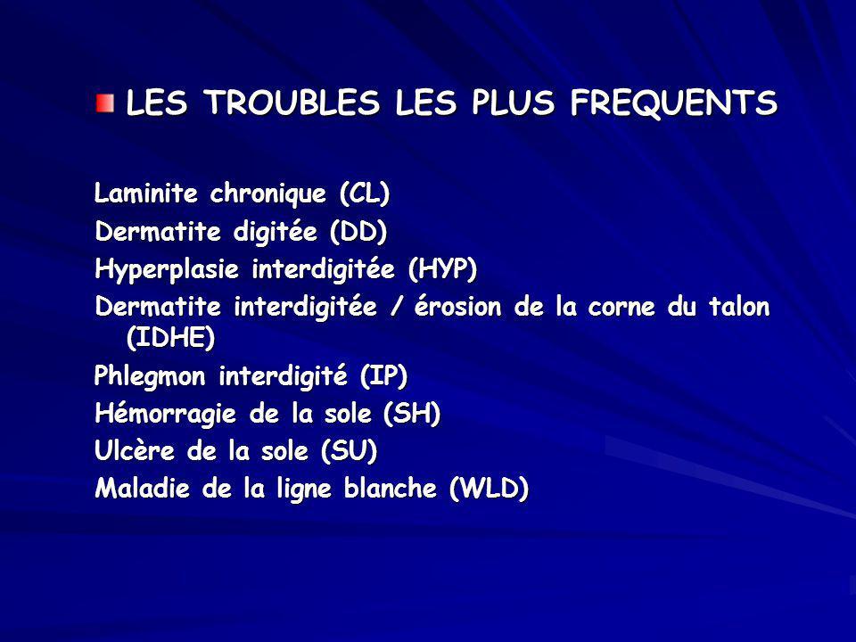 LES TROUBLES LES PLUS FREQUENTS Laminite chronique (CL) Dermatite digitée (DD) Hyperplasie interdigitée (HYP) Dermatite interdigitée / érosion de la c