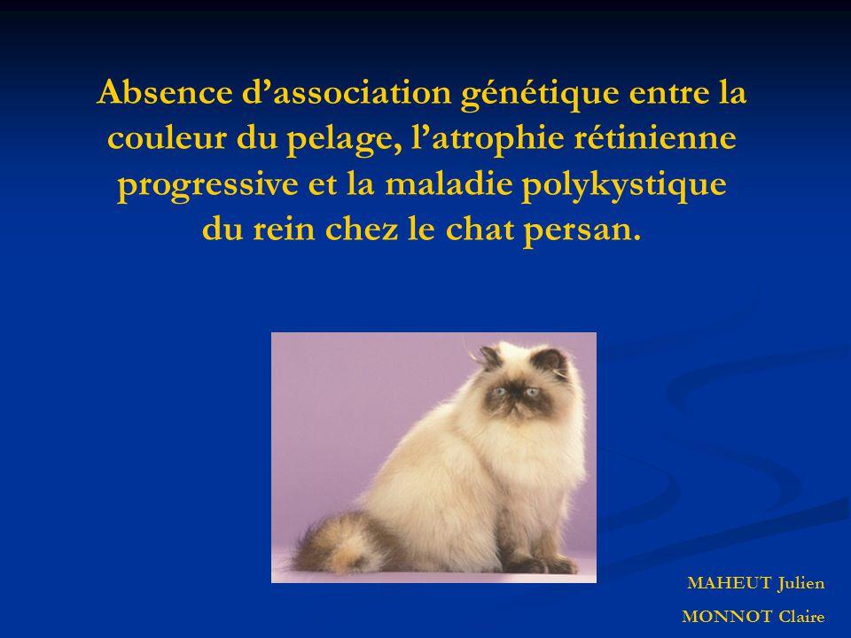 Absence dassociation génétique entre la couleur du pelage, latrophie rétinienne progressive et la maladie polykystique du rein chez le chat persan. MA