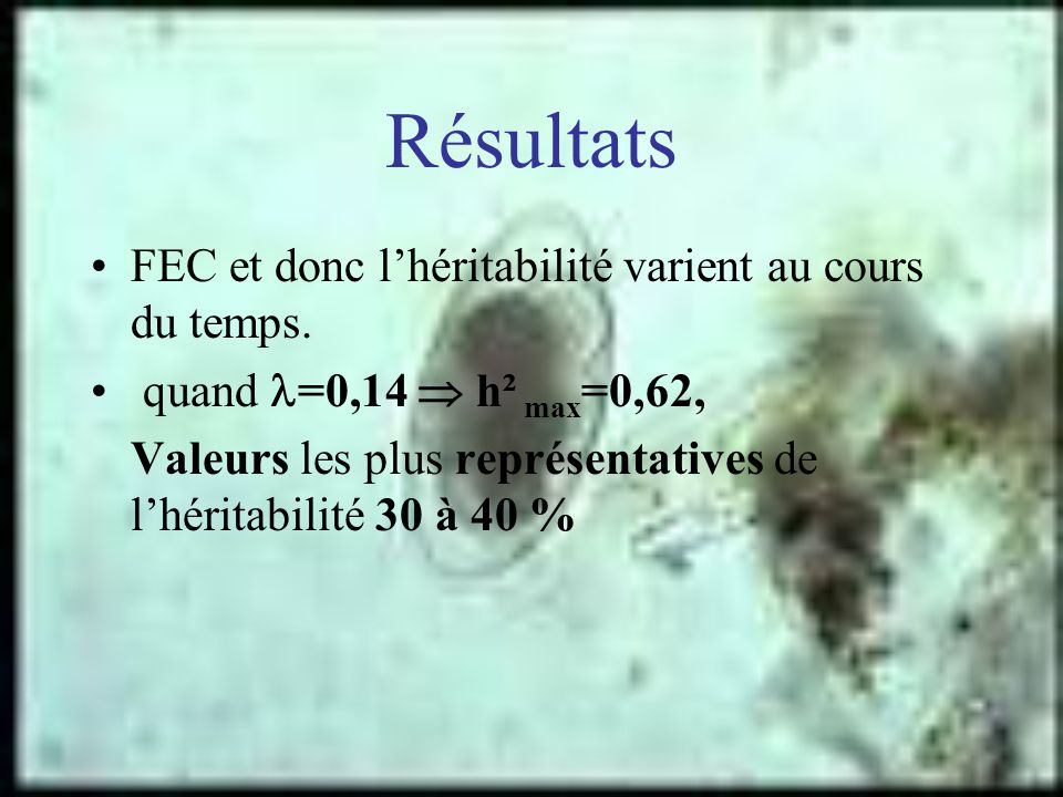 Résultats FEC et donc lhéritabilité varient au cours du temps. quand =0,14 h² max =0,62, Valeurs les plus représentatives de lhéritabilité 30 à 40 %