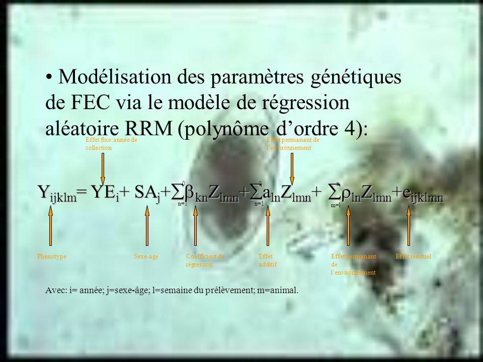 Modélisation des paramètres génétiques de FEC via le modèle de régression aléatoire RRM (polynôme dordre 4): Y ijklm = YE i + SA j + kn Z lmn + a ln Z