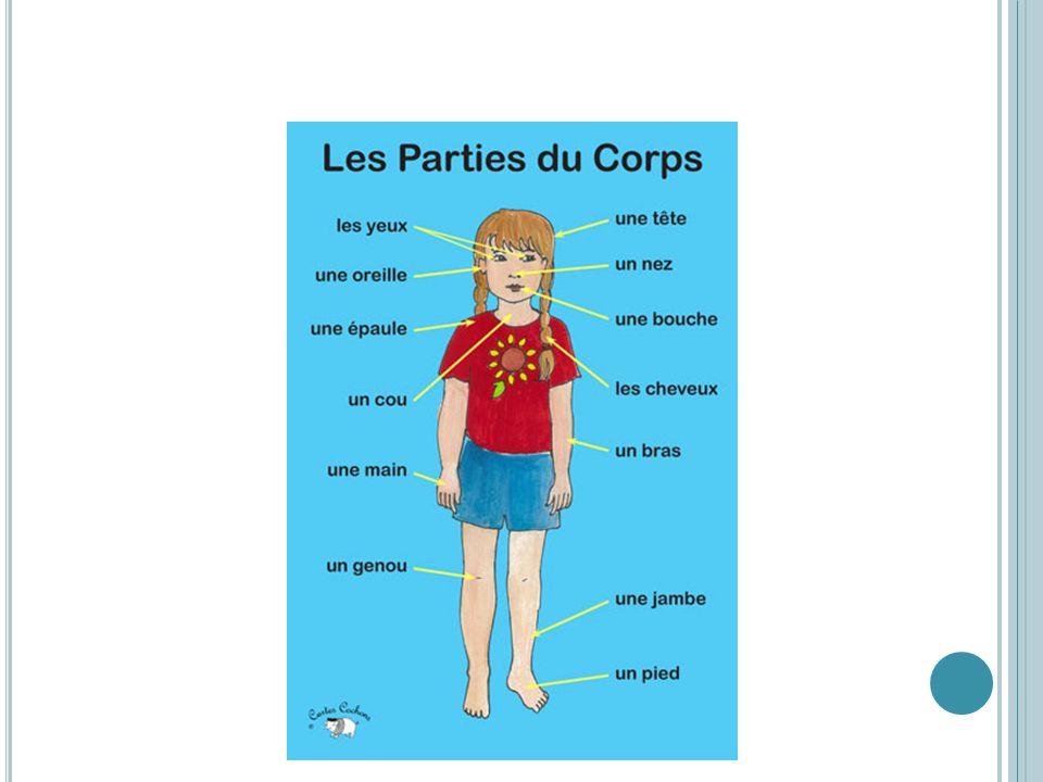 A CTIVITÉ – D ESSINE - MOI Votre partenaire aura une image Il/elle devra la décrire en français Vous dessinez limage selon la description Sortez une f