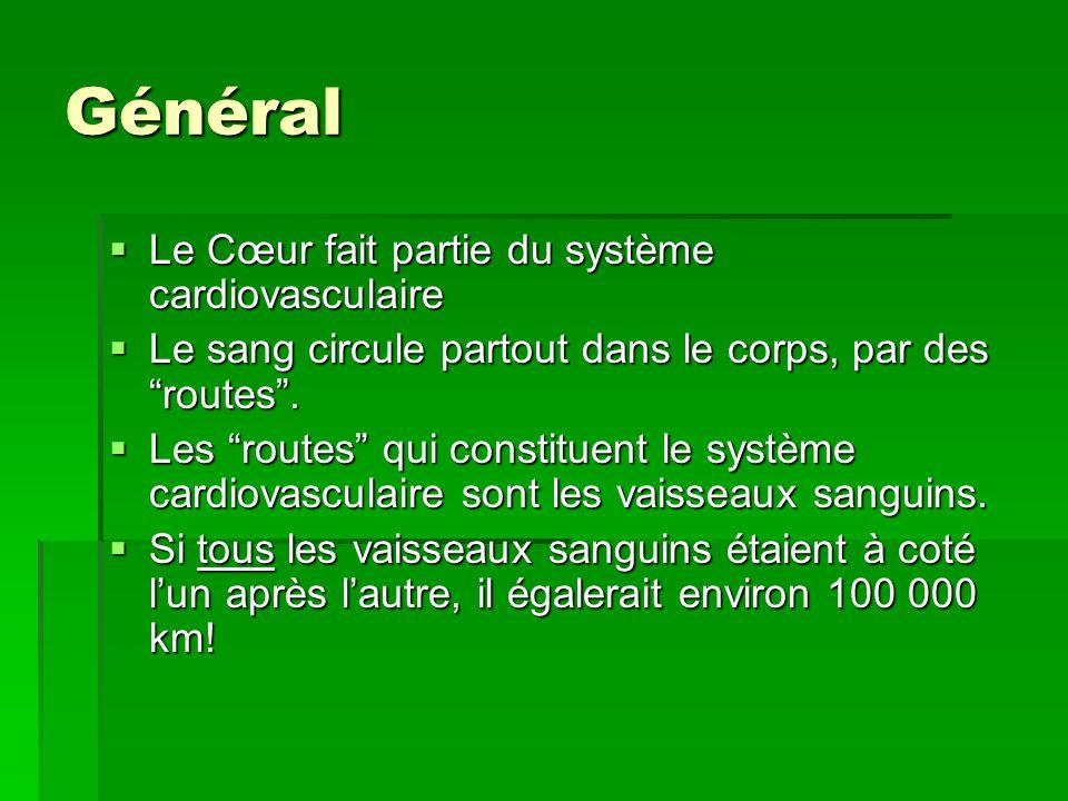 Général Le Cœur fait partie du système cardiovasculaire Le Cœur fait partie du système cardiovasculaire Le sang circule partout dans le corps, par des