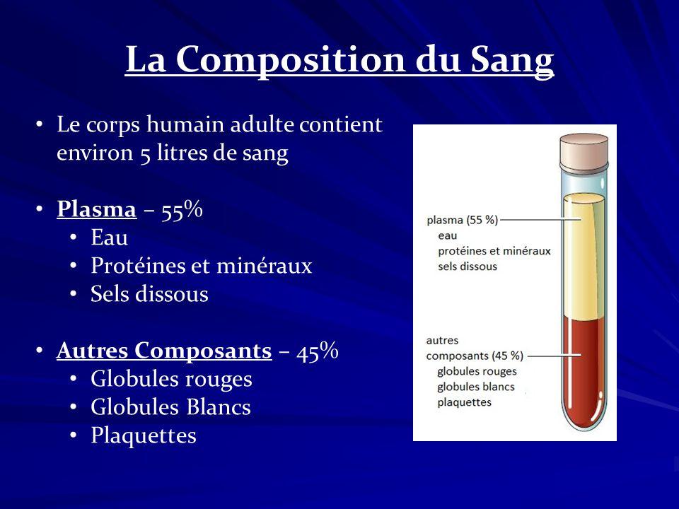La Composition du Sang Le corps humain adulte contient environ 5 litres de sang Plasma – 55% Eau Protéines et minéraux Sels dissous Autres Composants
