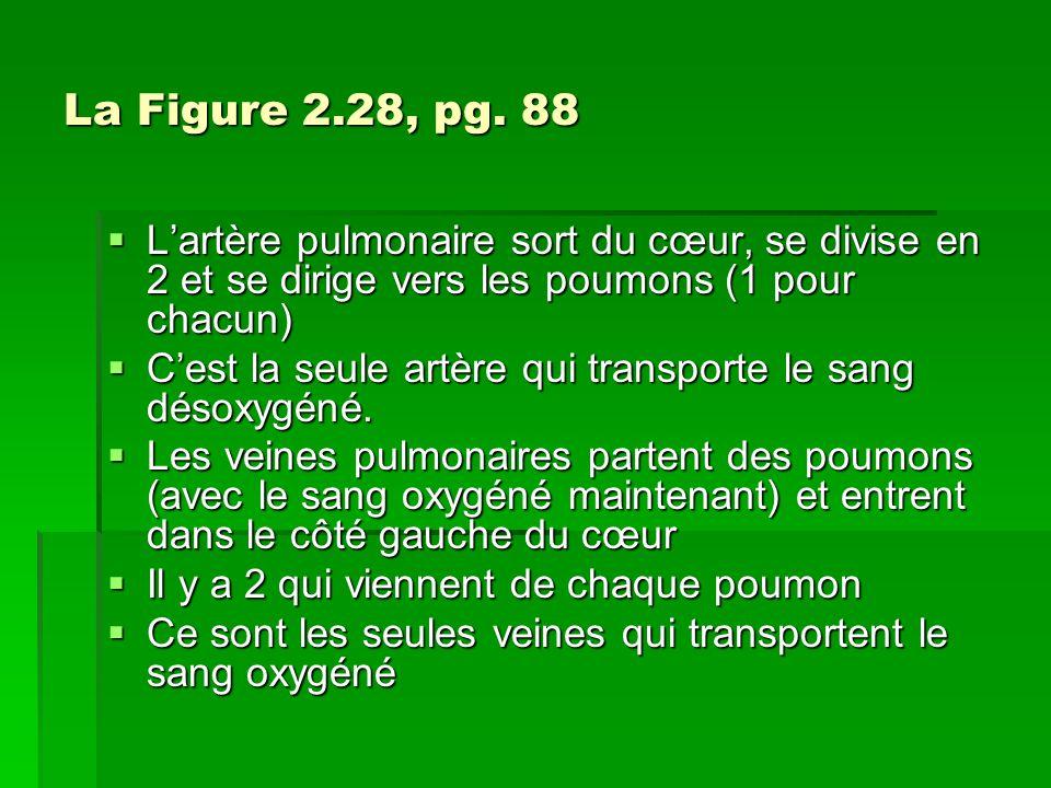 La Composition du Sang Le sang transporte 5 choses majeures: Loxygène Les nutriments Leau Le dioxyde de carbone Les déchets
