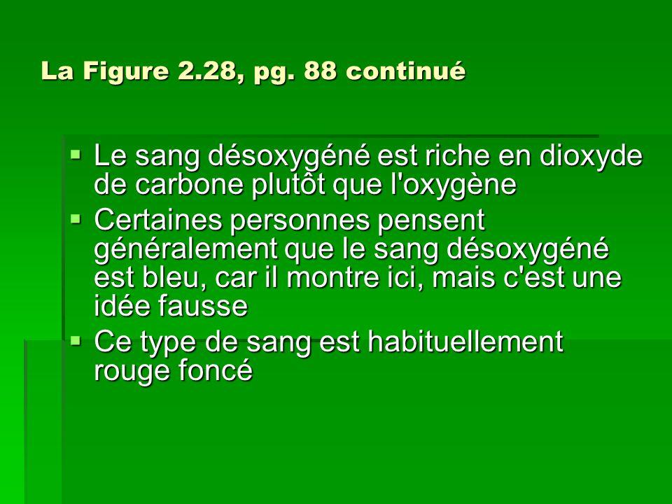 La Figure 2.28, pg. 88 continué Le sang désoxygéné est riche en dioxyde de carbone plutôt que l'oxygène Le sang désoxygéné est riche en dioxyde de car