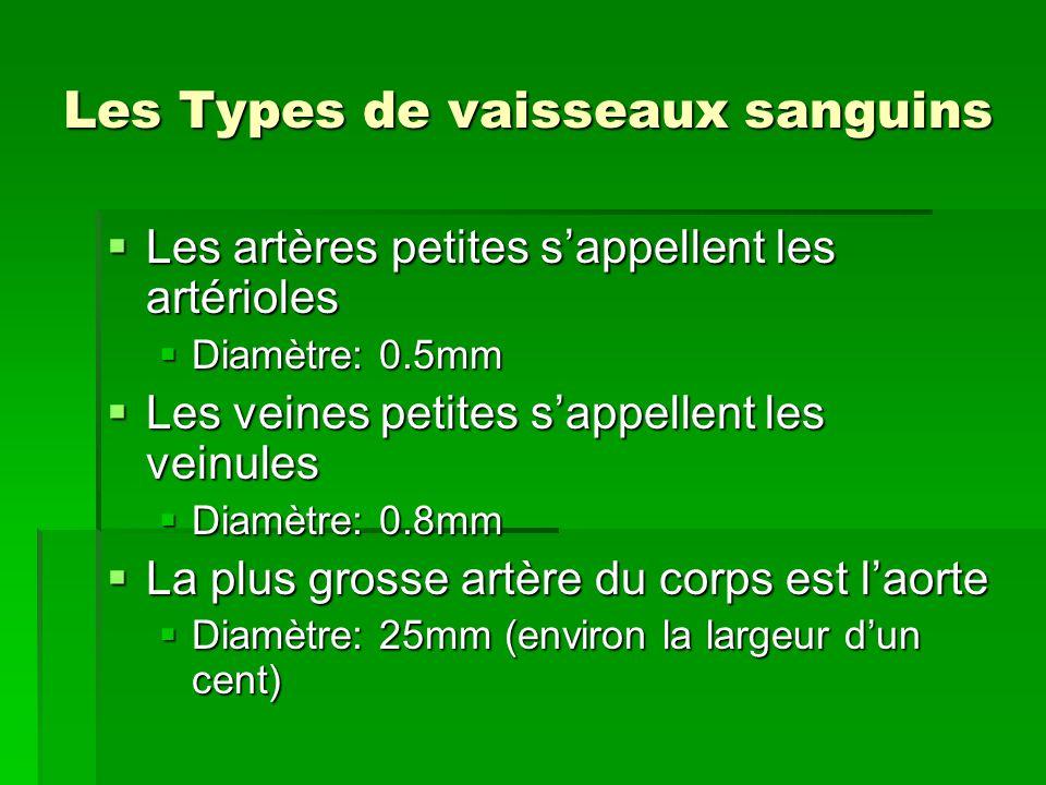Les Types de vaisseaux sanguins Les artères petites sappellent les artérioles Les artères petites sappellent les artérioles Diamètre: 0.5mm Diamètre: