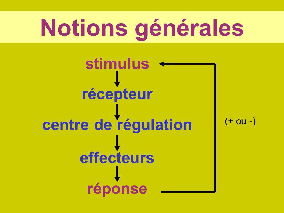 Notions générales stimulus réponse récepteur centre de régulation effecteurs (+ ou -)