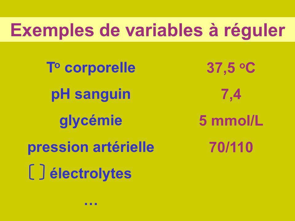 Exemples de variables à réguler T o corporelle pH sanguin glycémie pression artérielle électrolytes … 37,5 o C 7,4 5 mmol/L 70/110