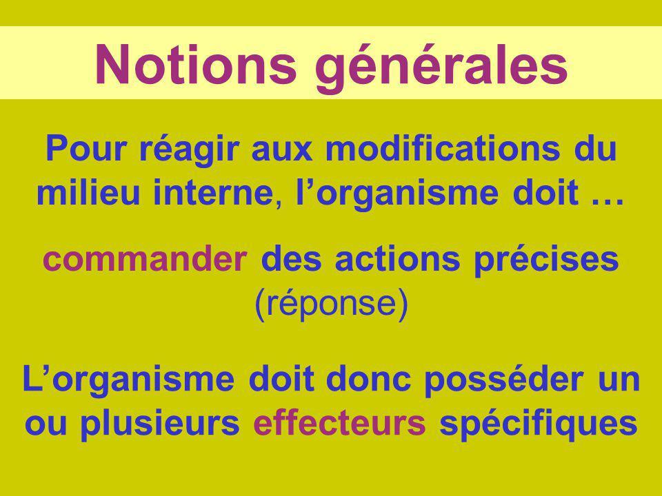 Notions générales Pour réagir aux modifications du milieu interne, lorganisme doit … commander des actions précises (réponse) Lorganisme doit donc pos