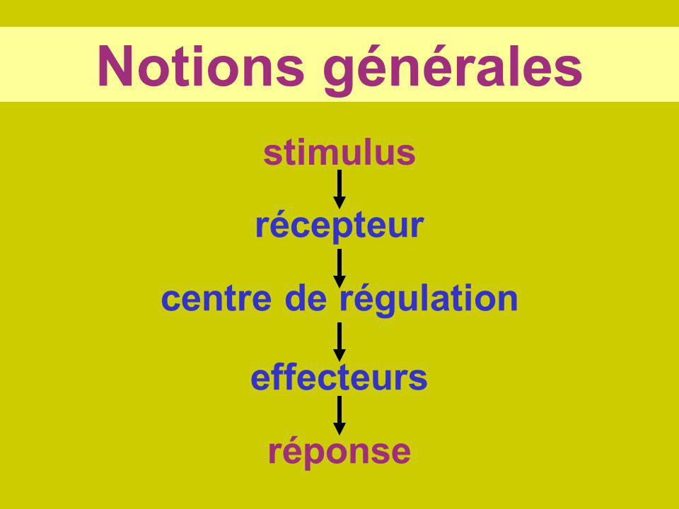 Notions générales stimulus réponse récepteur centre de régulation effecteurs