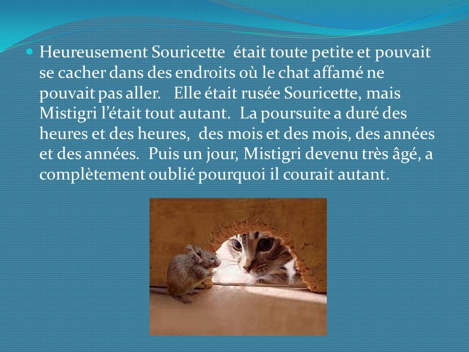 Heureusement Souricette était toute petite et pouvait se cacher dans des endroits où le chat affamé ne pouvait pas aller.