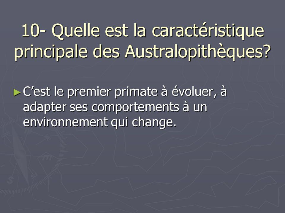 10- Quelle est la caractéristique principale des Australopithèques? Cest le premier primate à évoluer, à adapter ses comportements à un environnement