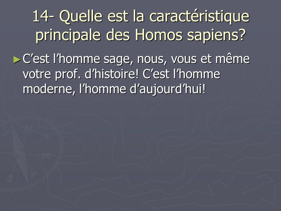14- Quelle est la caractéristique principale des Homos sapiens? Cest lhomme sage, nous, vous et même votre prof. dhistoire! Cest lhomme moderne, lhomm