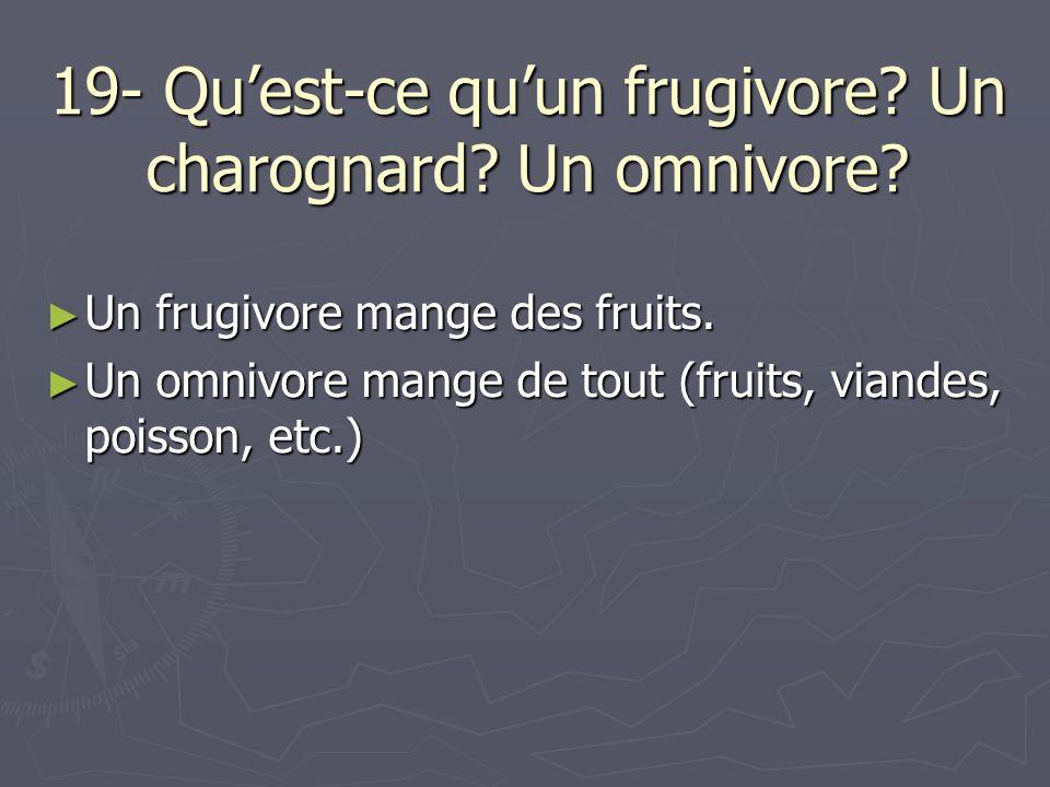 19- Quest-ce quun frugivore? Un charognard? Un omnivore? Un frugivore mange des fruits. Un frugivore mange des fruits. Un omnivore mange de tout (frui