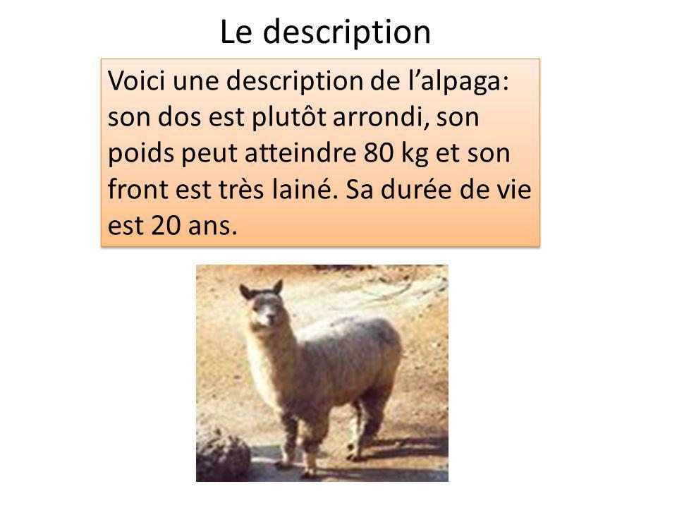 Le description Voici une description de lalpaga: son dos est plutôt arrondi, son poids peut atteindre 80 kg et son front est très lainé. Sa durée de v