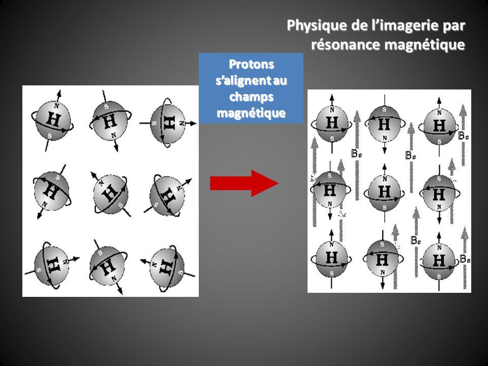 Protons salignent au champs magnétique Physique de limagerie par résonance magnétique