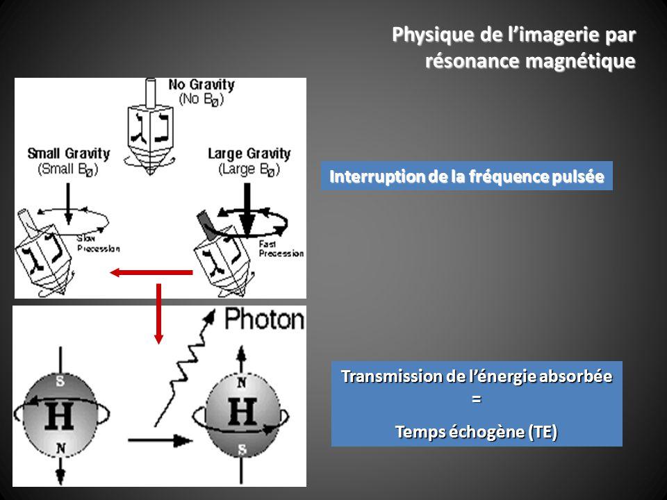 Transmission de lénergie absorbée = Temps échogène (TE) Interruption de la fréquence pulsée Physique de limagerie par résonance magnétique