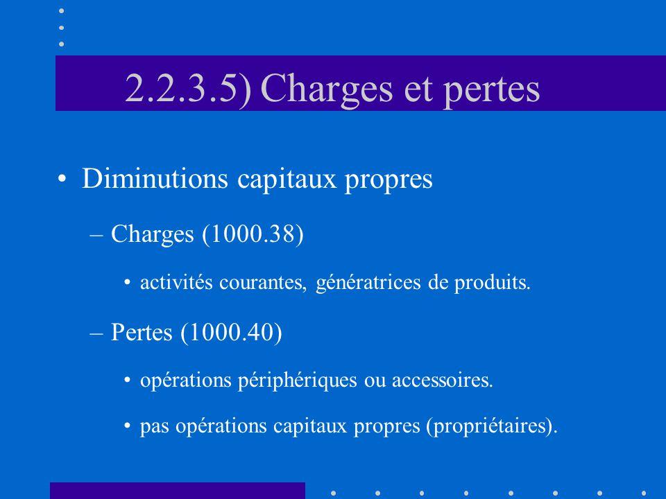 2.2.3.5) Charges et pertes Diminutions capitaux propres –Charges (1000.38) activités courantes, génératrices de produits.