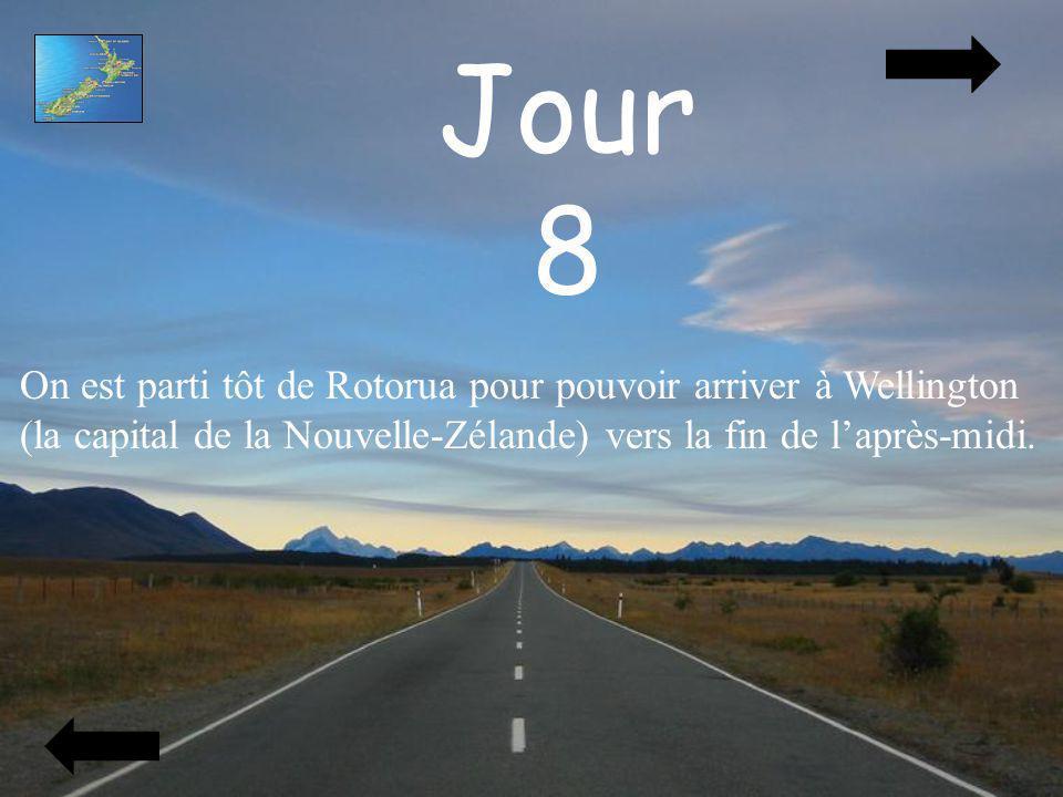 Jour 8 On est parti tôt de Rotorua pour pouvoir arriver à Wellington (la capital de la Nouvelle-Zélande) vers la fin de laprès-midi.