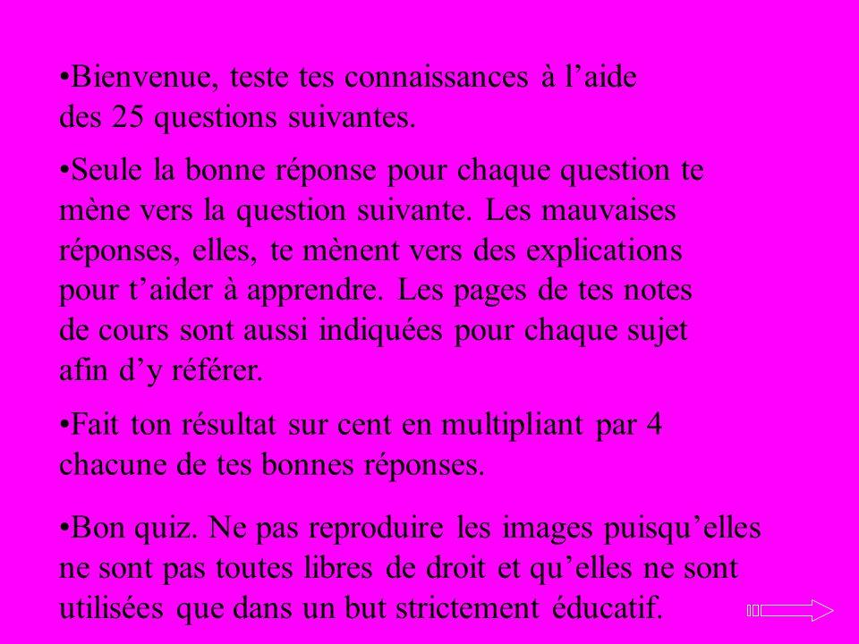 Bienvenue, teste tes connaissances à laide des 25 questions suivantes. Seule la bonne réponse pour chaque question te mène vers la question suivante.