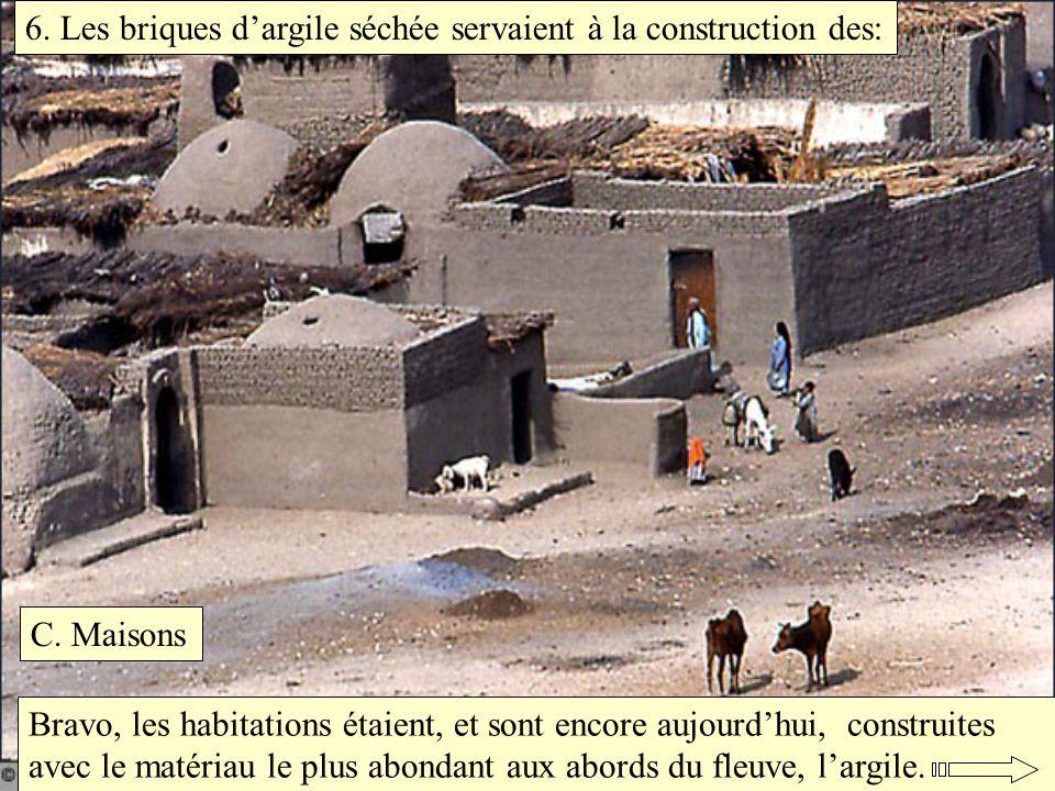 6. Les briques dargile séchée servaient à la construction des: C. Maisons Bravo, les habitations étaient, et sont encore aujourdhui, construites avec