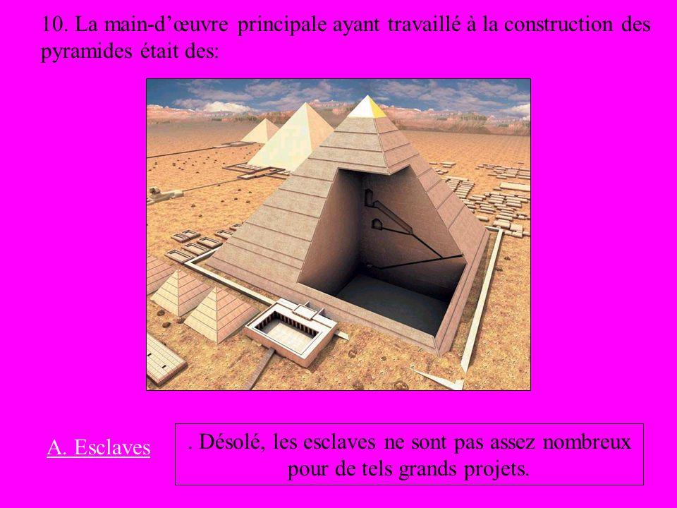 10. La main-dœuvre principale ayant travaillé à la construction des pyramides était des: A. Esclaves. Désolé, les esclaves ne sont pas assez nombreux