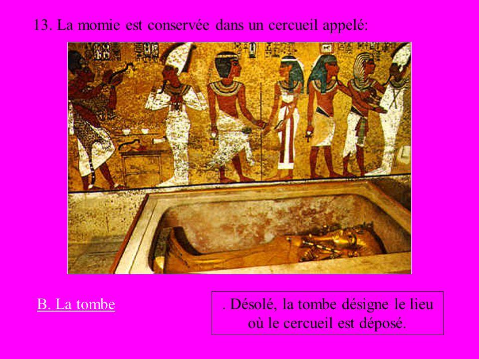 13. La momie est conservée dans un cercueil appelé:. Désolé, la tombe désigne le lieu où le cercueil est déposé. B. La tombe