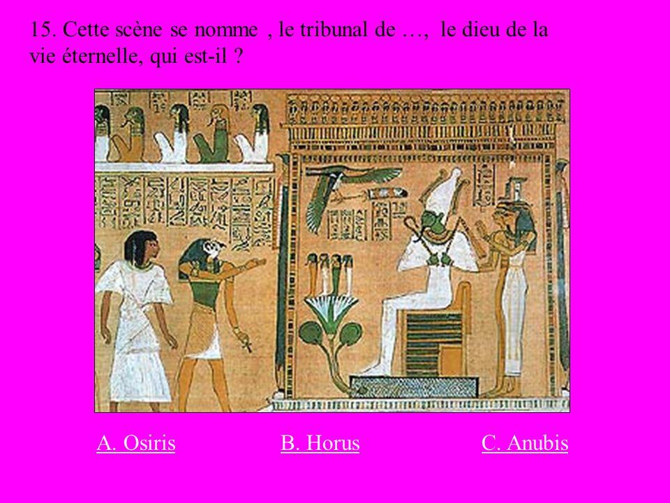 15. Cette scène se nomme, le tribunal de …, le dieu de la vie éternelle, qui est-il ? B. HorusA. OsirisC. Anubis