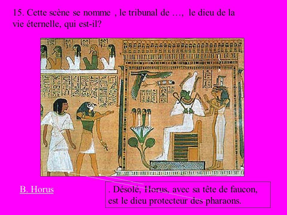 15. Cette scène se nomme, le tribunal de …, le dieu de la vie éternelle, qui est-il?. Désolé, Horus, avec sa tête de faucon, est le dieu protecteur de