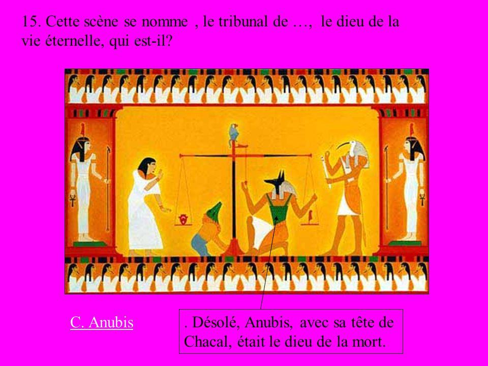 15. Cette scène se nomme, le tribunal de …, le dieu de la vie éternelle, qui est-il?. Désolé, Anubis, avec sa tête de Chacal, était le dieu de la mort