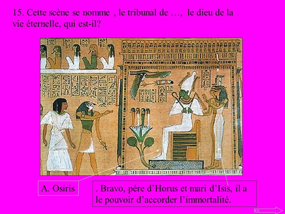 15. Cette scène se nomme, le tribunal de …, le dieu de la vie éternelle, qui est-il?. Bravo, père dHorus et mari dIsis, il a le pouvoir daccorder limm