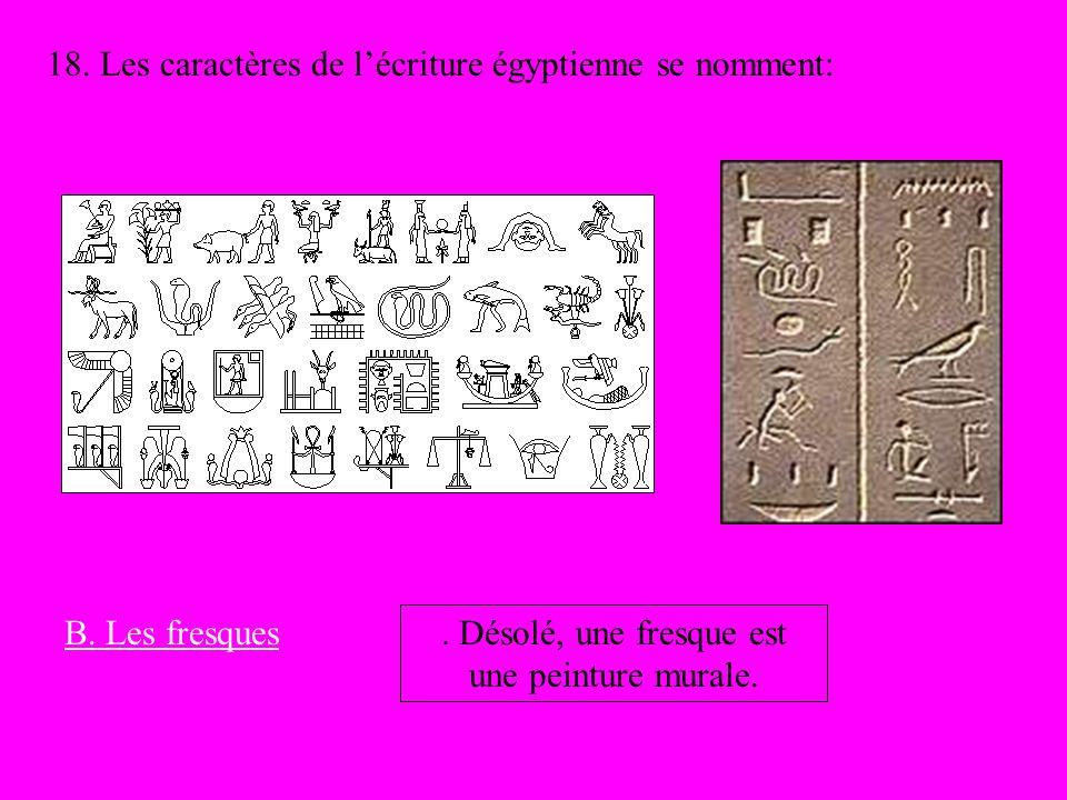 18. Les caractères de lécriture égyptienne se nomment: B. Les fresques. Désolé, une fresque est une peinture murale.