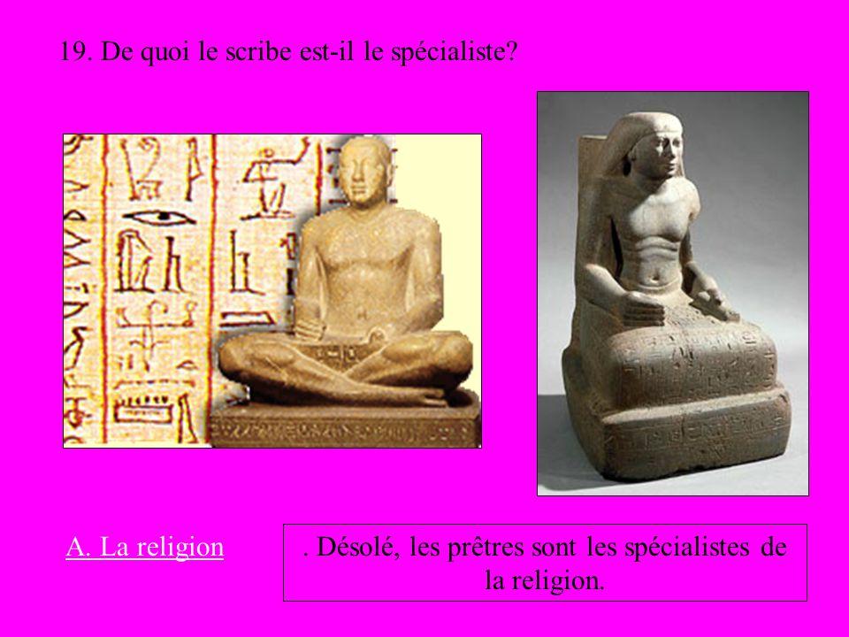 19. De quoi le scribe est-il le spécialiste? A. La religion. Désolé, les prêtres sont les spécialistes de la religion.