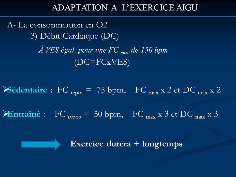ADAPTATION A LEXERCICE AIGU A- La consommation en O2 3) Débit Cardiaque (DC) À VES égal, pour une FC max de 150 bpm Sédentaire : FC repos = 75 bpm, FC max x 2 et DC max x 2 Entraîné : FC repos = 50 bpm, FC max x 3 et DC max x 3 (DC=FCxVES) Exercice durera + longtemps