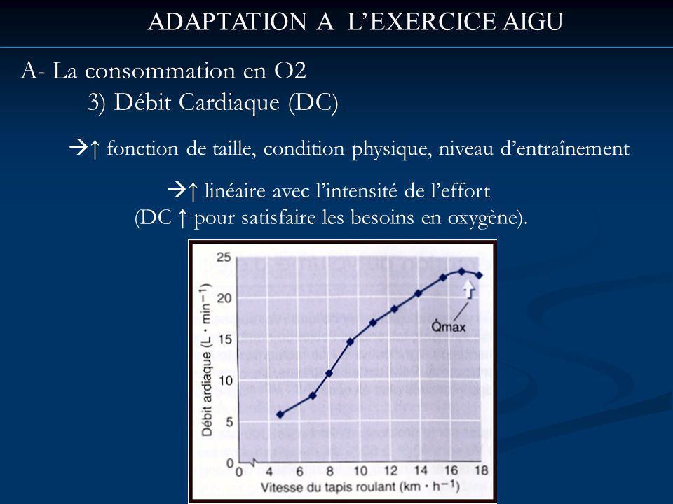 ADAPTATION A LEXERCICE AIGU A- La consommation en O2 3) Débit Cardiaque (DC) linéaire avec lintensité de leffort (DC pour satisfaire les besoins en oxygène).