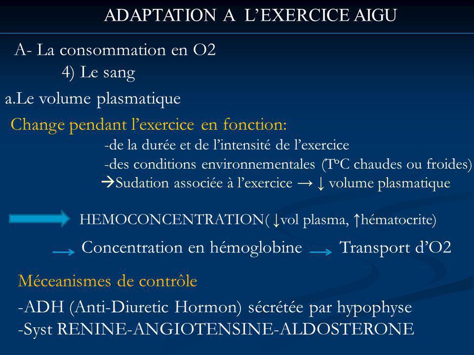 ADAPTATION A LEXERCICE AIGU A- La consommation en O2 4) Le sang a.Le volume plasmatique Change pendant lexercice en fonction: -de la durée et de lintensité de lexercice -des conditions environnementales (T o C chaudes ou froides) Sudation associée à lexercice volume plasmatique HEMOCONCENTRATION( vol plasma, hématocrite) Concentration en hémoglobine Transport dO2 Méceanismes de contrôle -ADH (Anti-Diuretic Hormon) sécrétée par hypophyse -Syst RENINE-ANGIOTENSINE-ALDOSTERONE