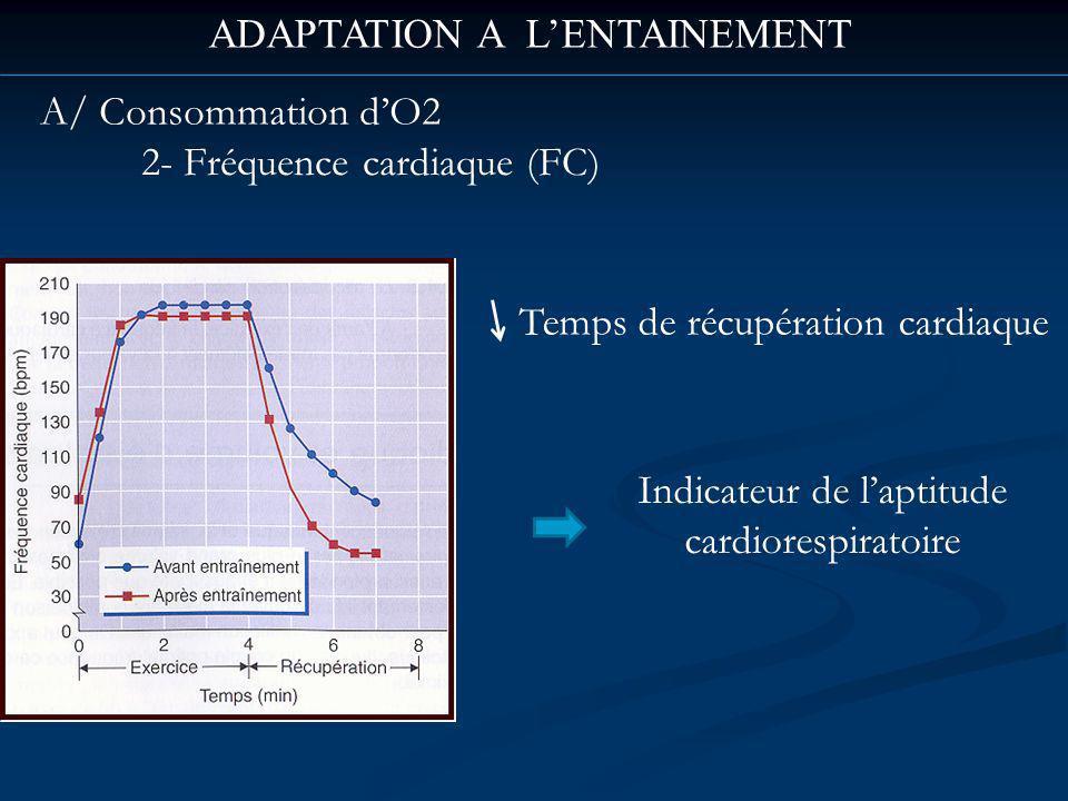 ADAPTATION A LENTAINEMENT A/ Consommation dO2 2- Fréquence cardiaque (FC) Temps de récupération cardiaque Indicateur de laptitude cardiorespiratoire